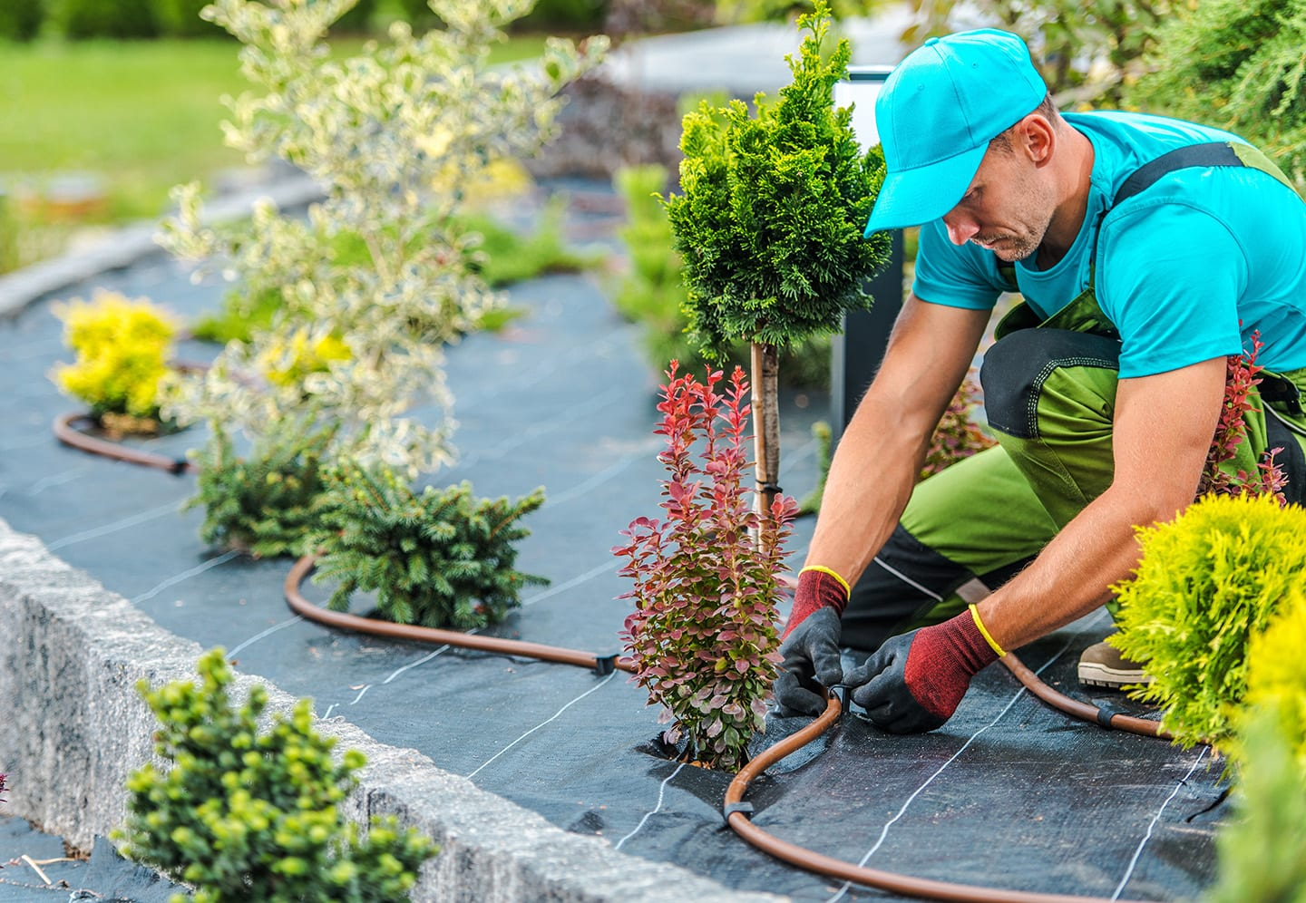 landscape irrigation systems in maryville il
