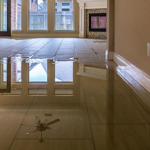 water damage restoration springfield il