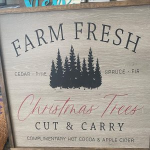 sawdust-and-glitter-gallery-christmas-signs-19.jpg