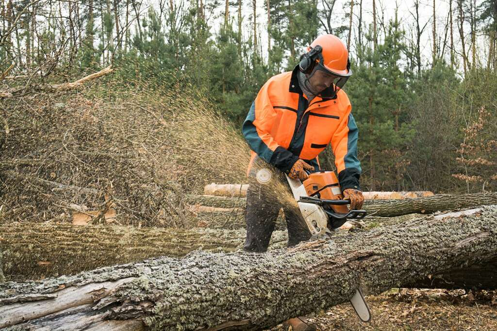 logging workers comp claims