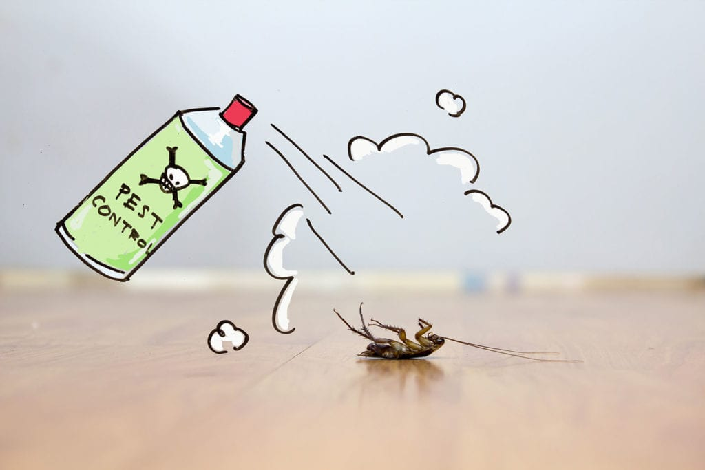 diy pest control for your home in moro il