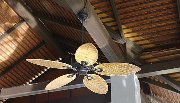 outdoor fans help prevent insects